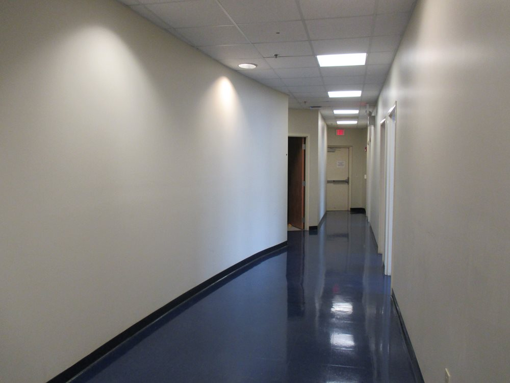Hall-with-curved-wall.JPG